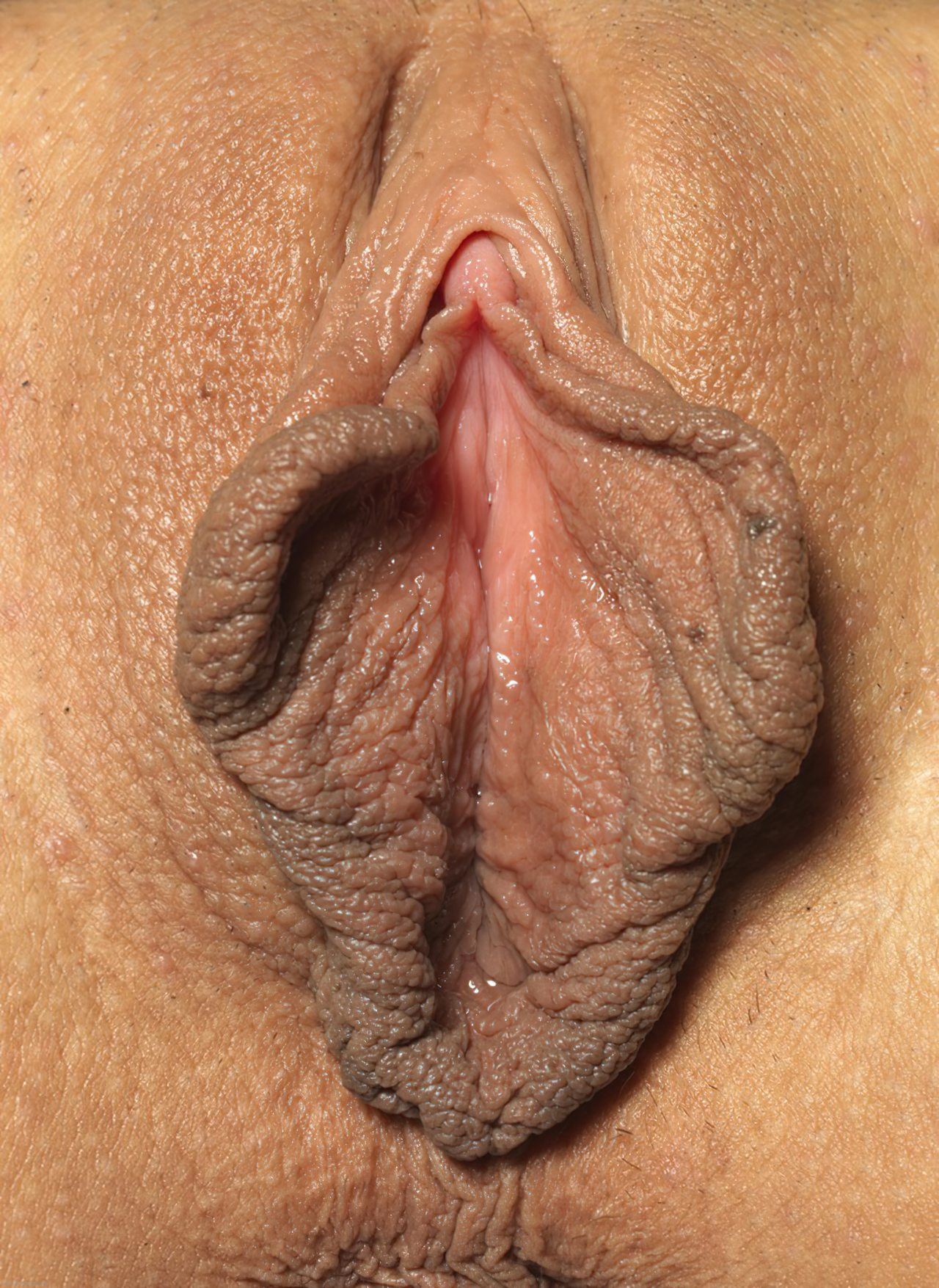 Buceta Bonita