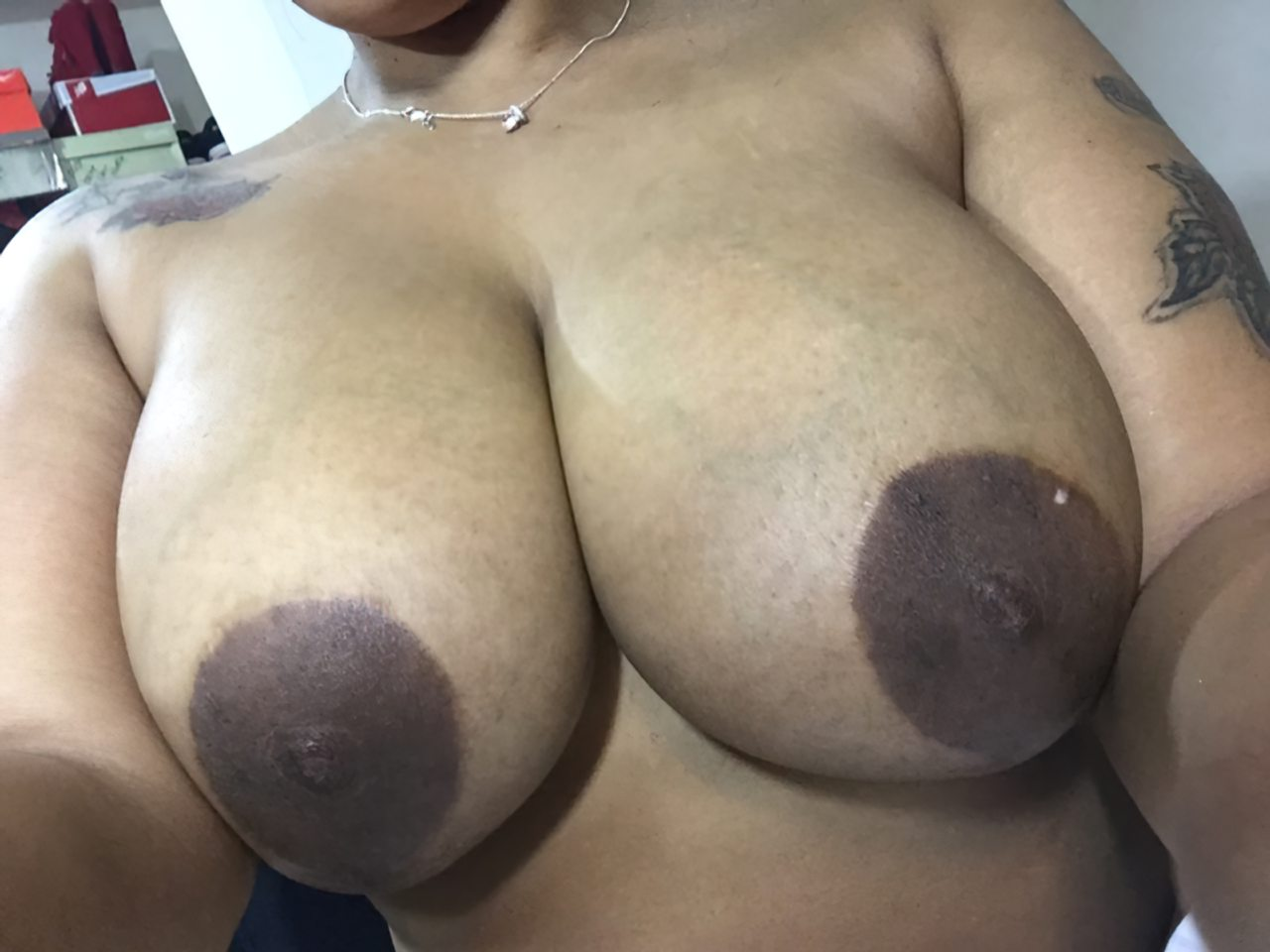 Negra Tesuda (8)